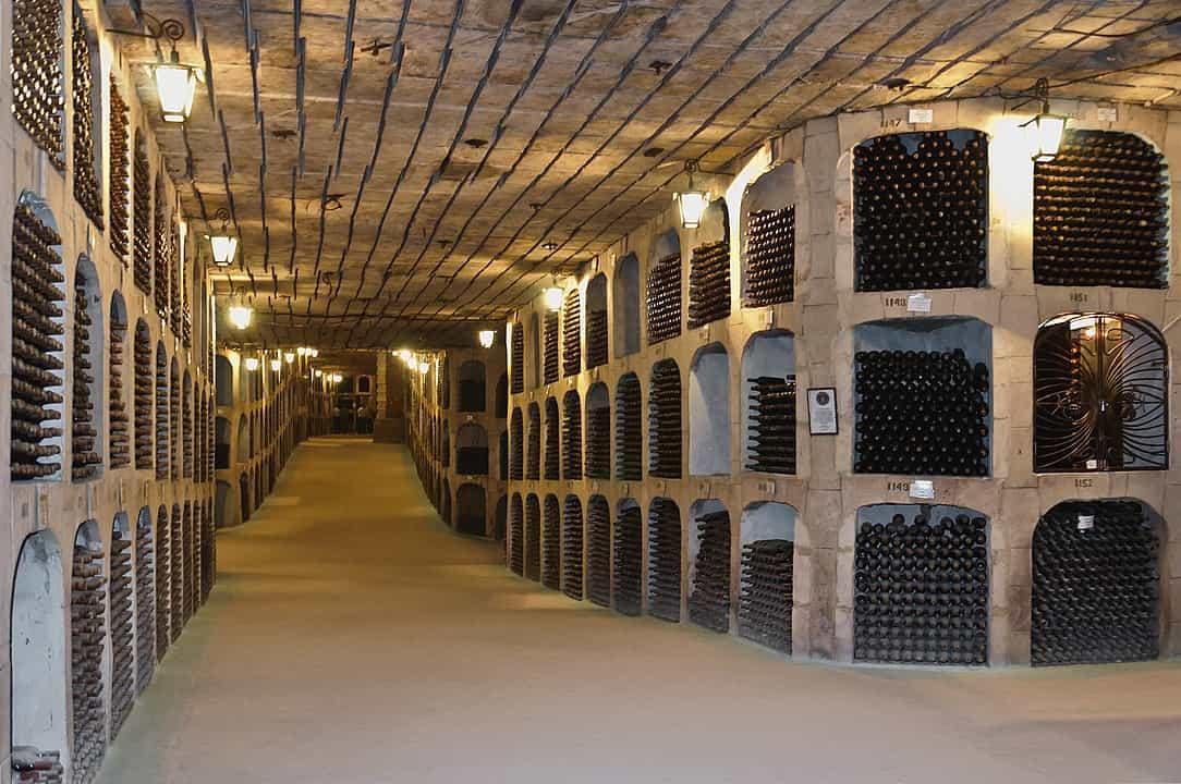 Niesamowita kolekcja wina